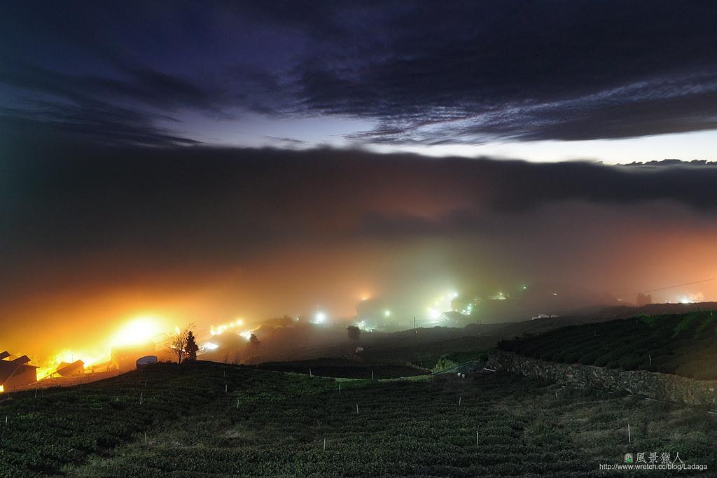 頂石棹 霧滿茶山