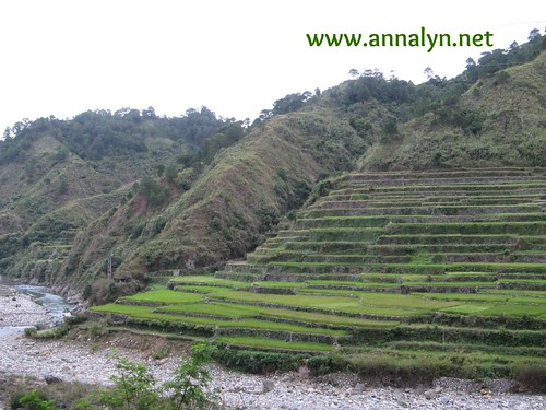 rice terraces on the way to Sagada