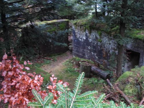 sentier des fortins 2 111