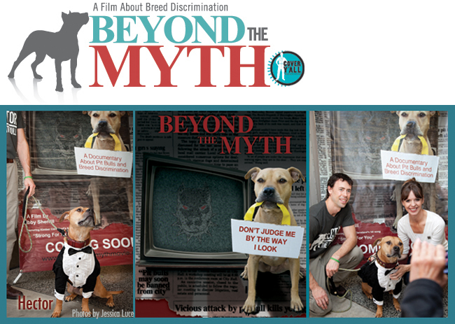 Beyond The Myth1