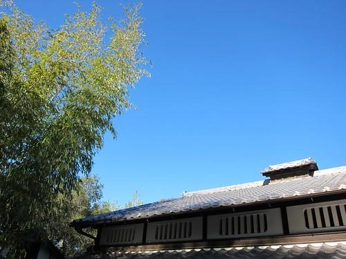 Hakone Japanese Gardens, Saratoga, CA IMG_2308