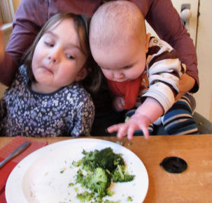Broccoli Grabber