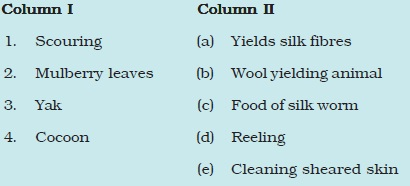 NCERT Class VII Science Chapter 3 Fibre to Fabric