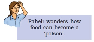 NCERT Class VIII Science Chapter 2 Microorganisms - Friend and Foe