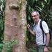 SZ looking at leafy liverworts on Bursera simaruba 1  by scott.zona