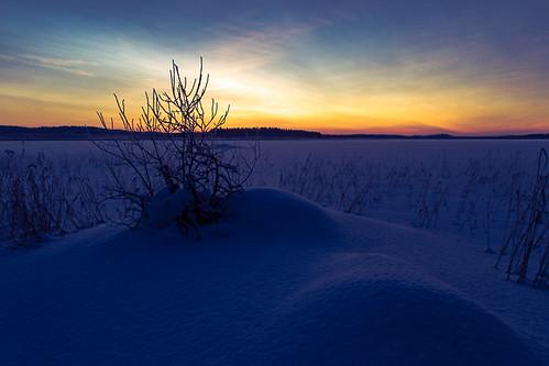 winter sun lake snow sunrise finland shore jyväskylä centralfinland jyväskyläsubregion