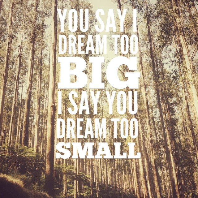 seeds // dream big