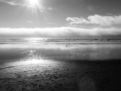 Cannon Beach Aug 14 - 2016 1