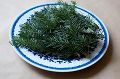sencha(0.0), plant(0.0), longjing tea(0.0), tieguanyin(0.0), gyokuro(0.0), leaf(1.0), rosemary(1.0), produce(1.0), food(1.0),