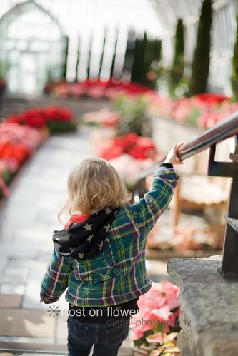 20121211-advent-day12-59.jpg