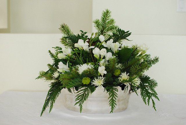 Green and White winter flowers