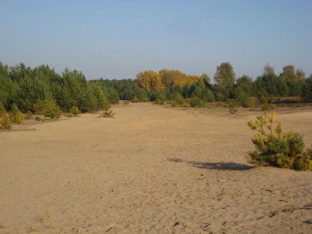 Märkische Sandbüchse