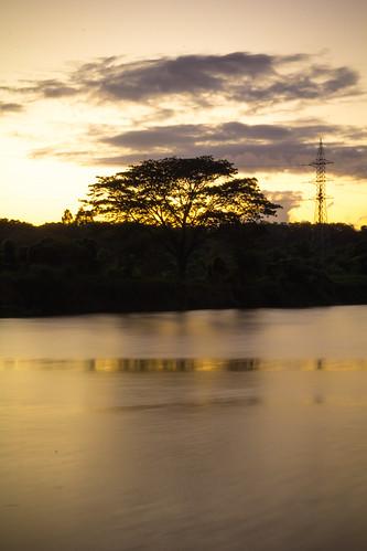 sunset tree rio canon river arbol atardecer santodomingo puestasol 60d engombe