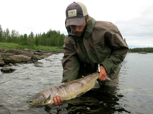 Photo of the Day: Stefan's Atlantic Salmon