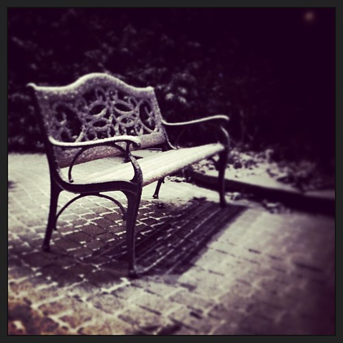 Waiting for Old Man Winter. #project365 day 343 by Sean Daniel
