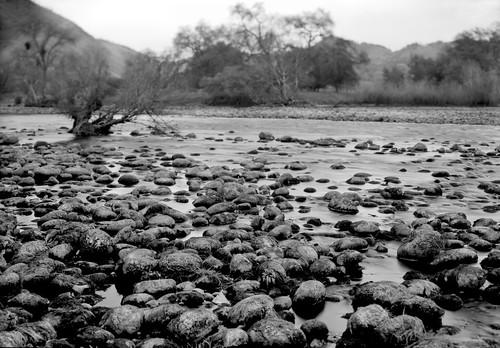 blackandwhite bw film monochrome century mediumformat river landscape graflex 2x3 presscamera fieldcamera centurygraphic technicalcamera canoscan9000f