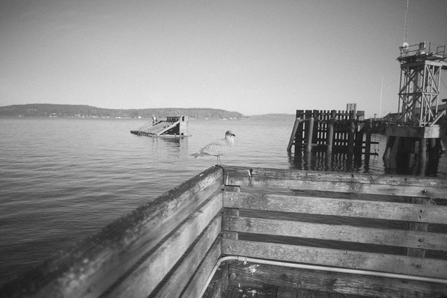 Point Defiance Tacoma