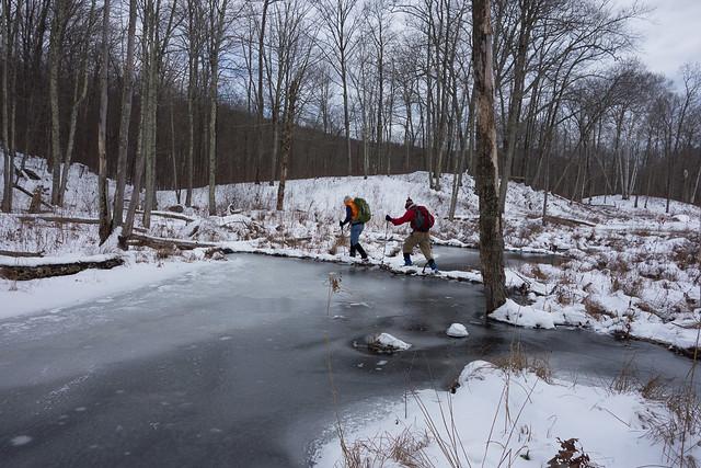 Dave and Loren crossing beaver dam, Pine Swamp