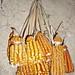 Corn - Maíz; San Miguel Piedras, Distrito de Nochixtlán, Región Mixteca, Oaxaca, Mexico por Lon&Queta