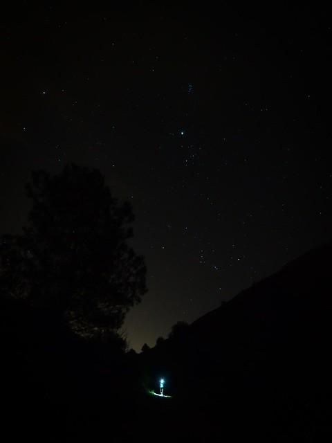 Bajando de noche por la rambla