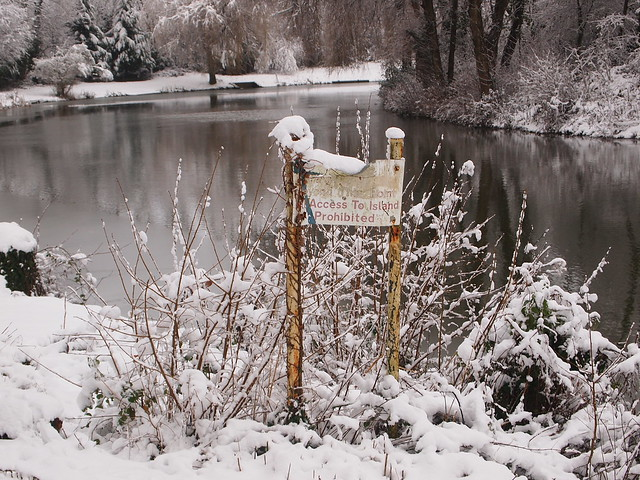 Snow @ Newport Fishing Lakes