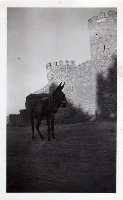 Torres de la Reina hacia 1925