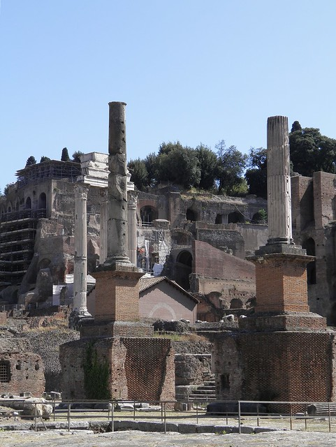 Honorary Columns, Roman Forum, Rome