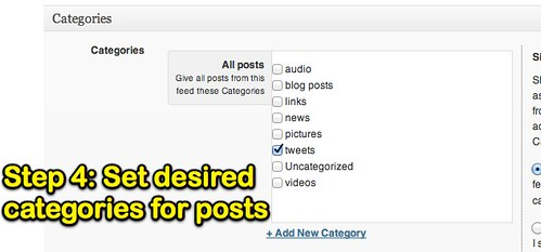 Set Desired categories for posts