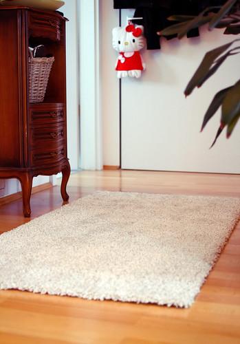 New carpet in the hallway