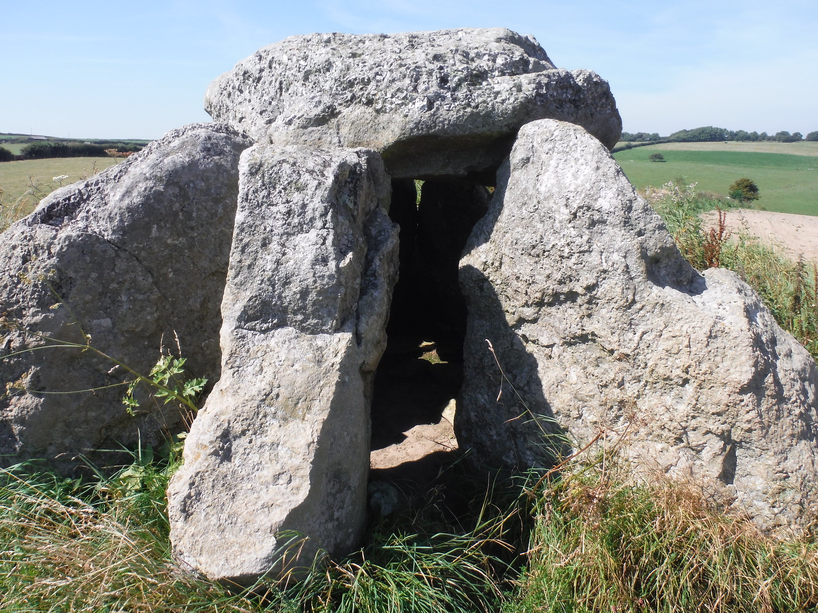 Hell Stone Burial Chamber (close-up) SWC Walk 275 Dorchester South Circular or to Portesham (Extension)