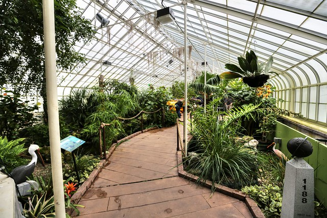 2012 December 07 Botanical Gardens Buffalo Ny Family Visit Flickr Photo Sharing