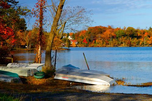 blue autumn trees sky sunlight lake newyork fall water colors sunshine landscape boats fishing foliage shore monroe resting orangecounty walton funnystory