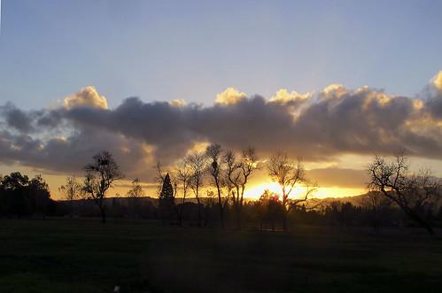 sunset c7006