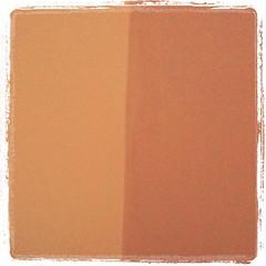 orange(0.0), textile(0.0), leather(0.0), wallet(0.0), rectangle(1.0), brown(1.0), tan(1.0),