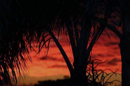 sunset black colors beautiful island barbados caribbean