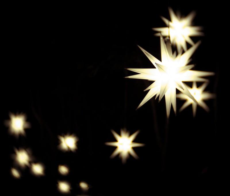 moravian stars