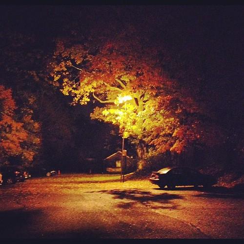 night newjersey morristown