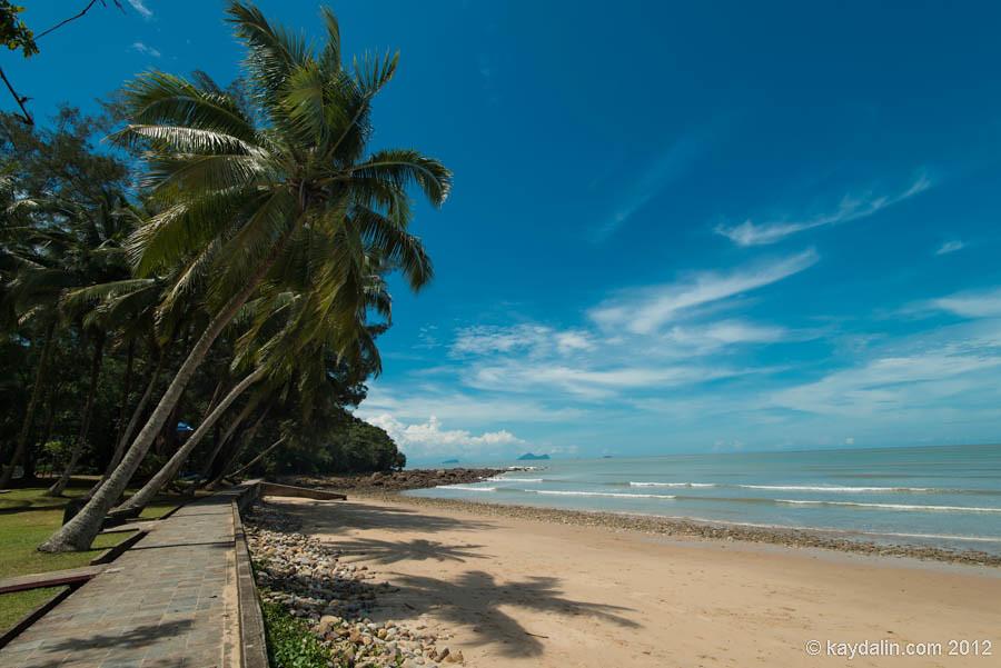 дамай, пальмы на пляже, кучинг