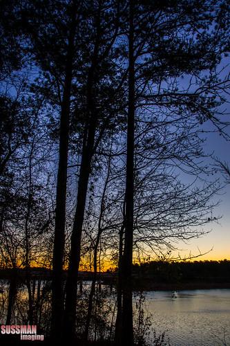 trees lake nature water silhouette sunrise georgia lagrange troupcounty westpointlake thesussman sonyalphadslra550 sussmanimaging