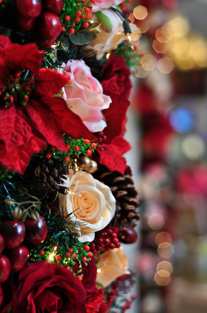 2012 Christmas 圣诞