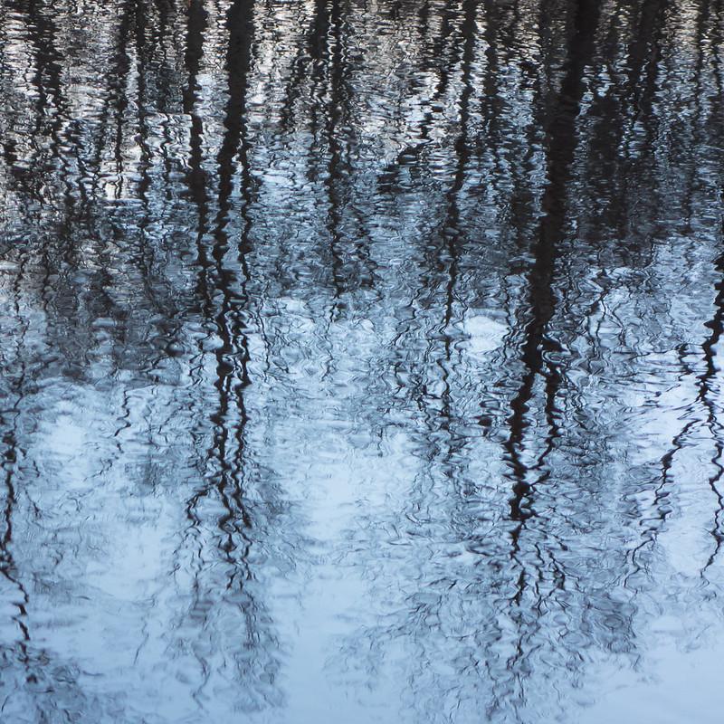 Pine Swamp impressionism