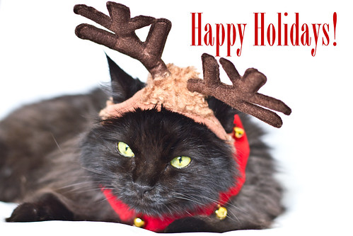 Happy Holidays 2012