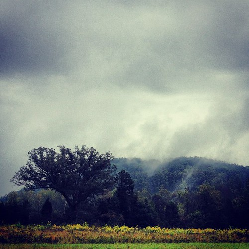 mist mountains tennessee rainy knoxvilletn uploaded:by=flickstagram instagram:venue_name=smokymountaintennisacademy instagram:venue=5896139 instagram:photo=282501983502339474170002