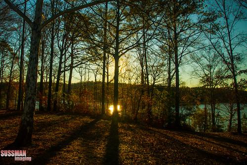 trees lake reflection nature water silhouette sunrise georgia lagrange troupcounty westpointlake thesussman sonyalphadslra550 sussmanimaging