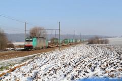 2841 h sncb logistics ligne 24 warsage 8 decembre 2012