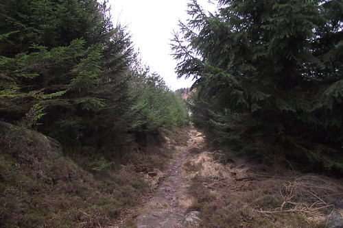 chemin des bornes 003