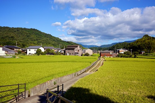 road mountains green field japan clouds day rice sony 日本 米 道 apsc nex7 sel24f18z e24mmf18za gettyimagesjapan12q4 gettyimagesjapan13q1 ©jakejung pwpartlycloudy