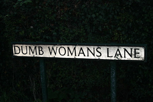 Dumb Womans Lane by Jeff And