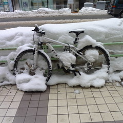 Cycling Sapporo
