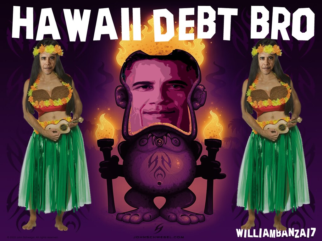 HAWAII DEBT BRO